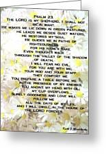 23 Rd Psalm Greeting Card