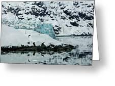 Alaska_00024 Greeting Card