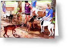 #258 Rruff Dog Park Greeting Card