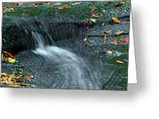 260 Olmsted Falls Greeting Card