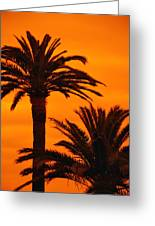 Sunrise And Sunset Greeting Card