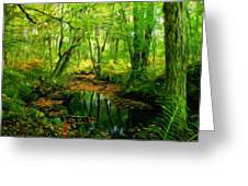 Landscape Nature Greeting Card