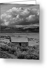 2d07515-bw Abandoned Cabin Greeting Card