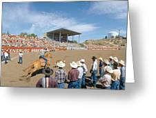 75th Ellensburg Rodeo, Labor Day Greeting Card