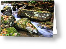 Autumn Mountain Stream Greeting Card
