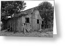 Barn In Kentucky No 69 Greeting Card