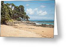 Beach In New Zealand Greeting Card