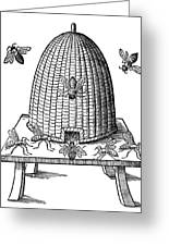 Beehive Greeting Card