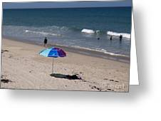 Brevard County Florida Beaches Greeting Card