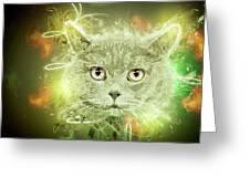 British Shorthair Cat Greeting Card