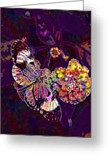 Butterfly Macro Pose Plant Green  Greeting Card