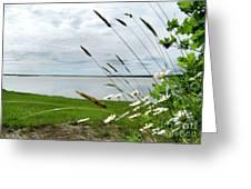 Cape Cod Salt Pond Greeting Card