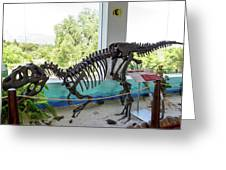 Centro De Investigaciones Paleontologicas Greeting Card