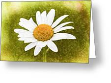 Chamomile Watercolor Greeting Card