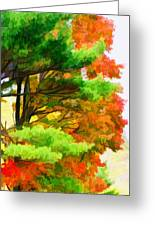3 Colors Of The Nature 1 Greeting Card