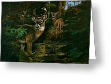 3 Deer Watching Greeting Card