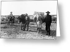 3 Desert Prospectors C. 1900 Greeting Card