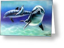 3 Dolphins Greeting Card