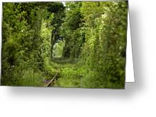 Famous Tunnel Of Love Location Greeting Card