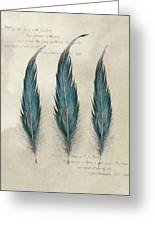 3 Feathers And Quote Greeting Card