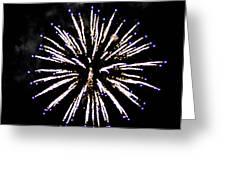 Firework Colors Greeting Card