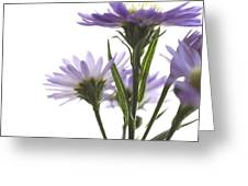 Flower Abstract Greeting Card