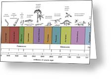 Geologic Time Line Greeting Card