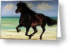 Horses In Paradise  Run Greeting Card