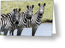 3 In A Row Greeting Card