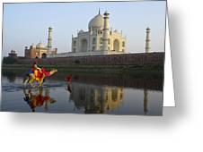 India's Taj Mahal Greeting Card