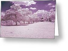 Infrared Garden Greeting Card