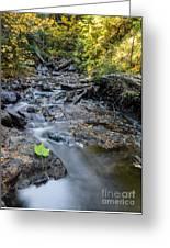 Jacob's Creek Rapids Greeting Card