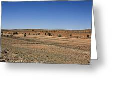 Kgalagadi Greeting Card