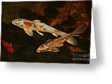 3 Koi Greeting Card