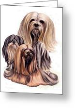 Lhasa Apso Triple Greeting Card