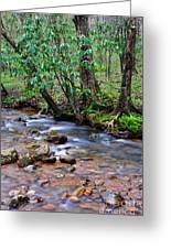 Middle Fork Of Williams River Greeting Card