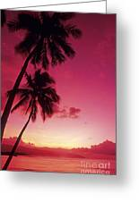 Palms Against Pink Sunset Greeting Card