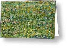 Patch Of Grass Greeting Card