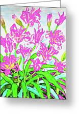 Pink Daily Lilies Greeting Card