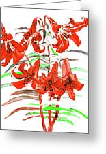 Red Lilies, Hand Drawn Painting Greeting Card