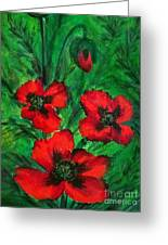 3 Red Poppies Greeting Card