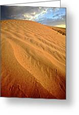 Sand Dune At Great Sand Hills In Scenic Saskatchewan Greeting Card