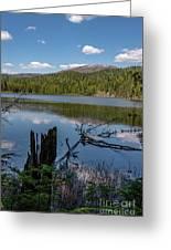South Skookum Lake Greeting Card