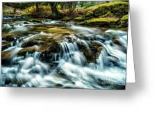 Spring Along Anthony Creek Greeting Card