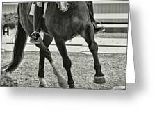 Stepping Up Greeting Card by Dressage Design