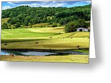 Summer Morning Hay Field Greeting Card