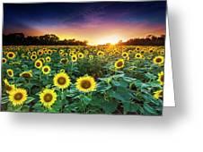 3 Suns Greeting Card