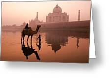 Taj Mahal At Dawn Greeting Card