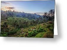 Tegalalang - Bali Greeting Card