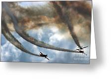 The Blades Extra 300 Greeting Card